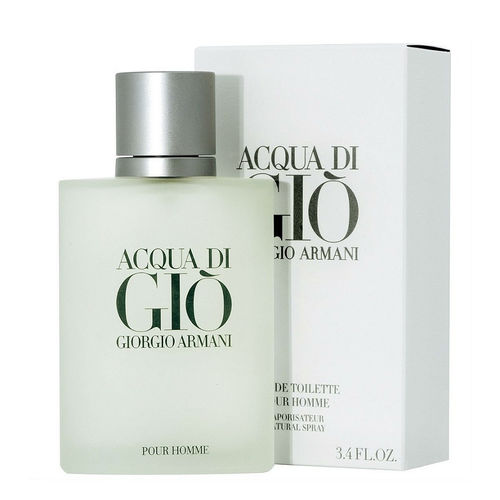 Acqua Di Giò Giorgio Armani Edt Perfume Masculino 100 Ml