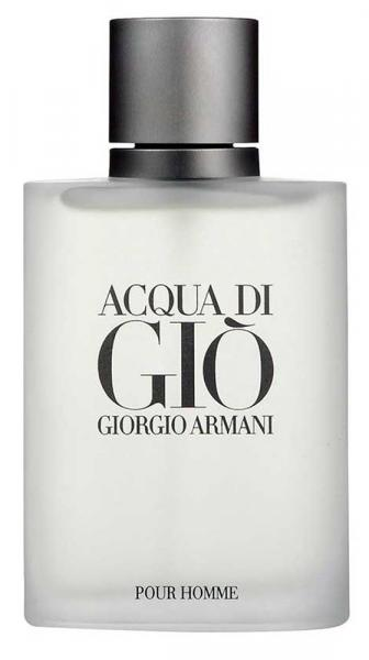 Acqua Di Gio Pour Homme Masculino Eau de Toilette 100ml - Giorgio Armani