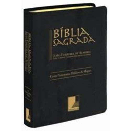 Tudo sobre 'Biblia Sagrada'