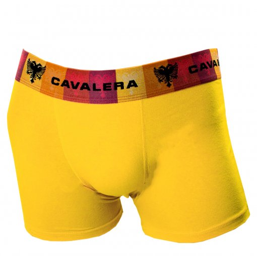 Bizz Store - Cueca Boxer Masculina Cavalera Joe