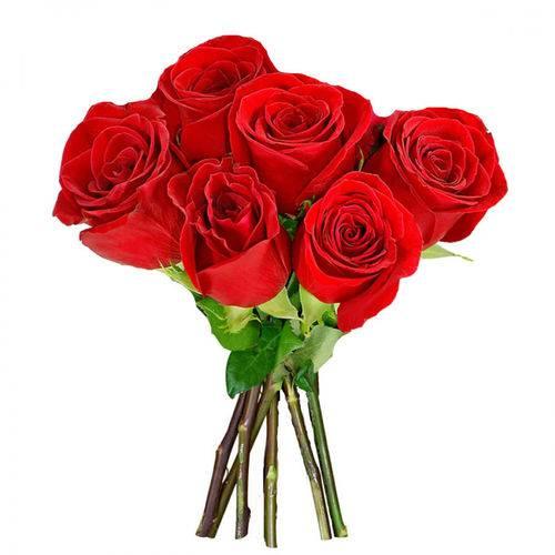 Tudo sobre 'Buque 6 Rosas Vermelhas'