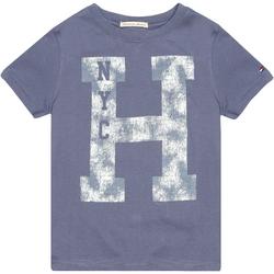 Camiseta Tommy Hilfiger Estampa Frontal