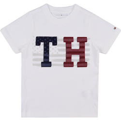 Camiseta Tommy Hilfiger Estampa Patch