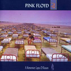 Tudo sobre 'CD Pink Floyd - a Momentary Lapse Of Reason'