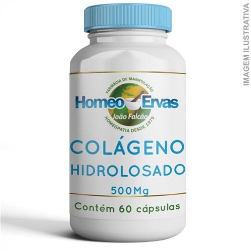 Colágeno Hidrolisado 500Mg - 60 Cápsulas