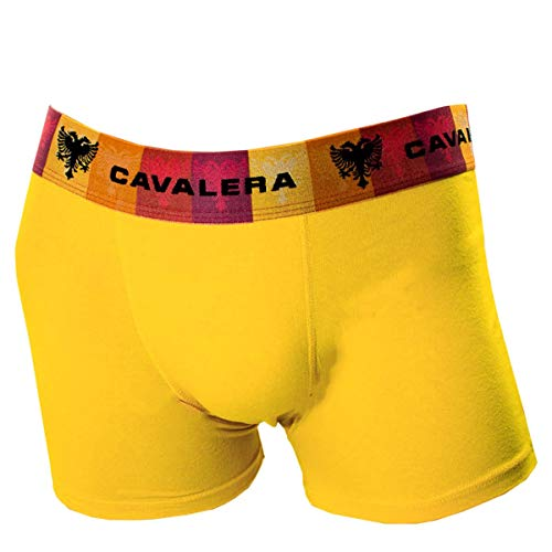 Cueca Boxer Masculina Cavalera Joe Qe5494
