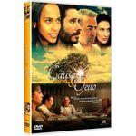 DVD Causa e Efeito