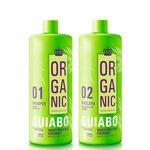 Escova Progressiva Definitiva de Quiabo Organic 2x1litro