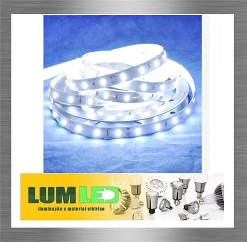 Fita LED 7020 Branco Frio 5 Metros