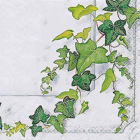 Tudo sobre 'Guardanapo Toke e Crie Folhas de Hera - 5 Unid'