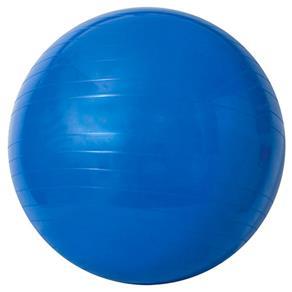 Gym Ball 65cm com Bomba de Ar - Acte Sports