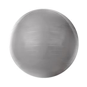 Gym Ball com Bomba de Ar 55cm Cinza T9-55 - Acte