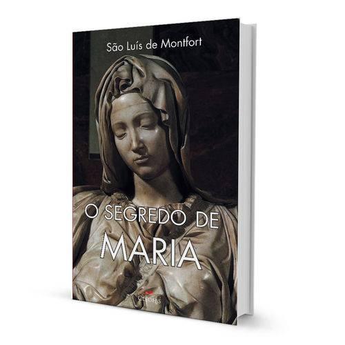 Tudo sobre 'Livro o Segredo de Maria'