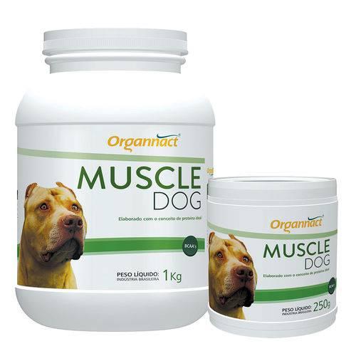 Tudo sobre 'Muscle Dog Organnact - 1kg'