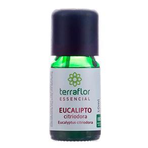 Óleo Essencial de Eucalipto Citriodora 10ml Terra Flor