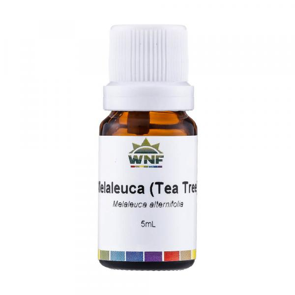 Óleo Essencial Natural de Melaleuca (Tea Tree) 5ml WNF