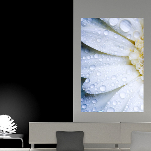 Painel Adesivo de Parede - Flor - 071pn