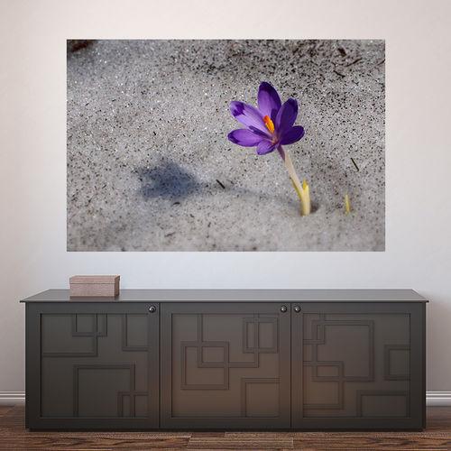 Painel Adesivo de Parede - Flor - N3468