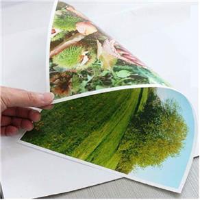 Papel Fotográfico Brilhante Glossy Dupla Face 260G | A4 20 Folhas