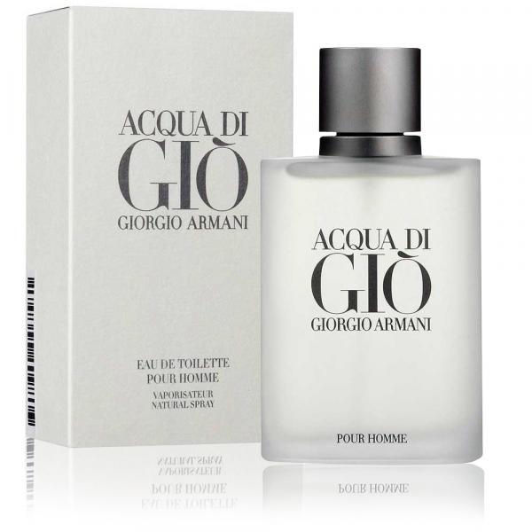 Perfume Acqua Di Gio Pour Homme Masculino Edt 100ml Giorgio Armani