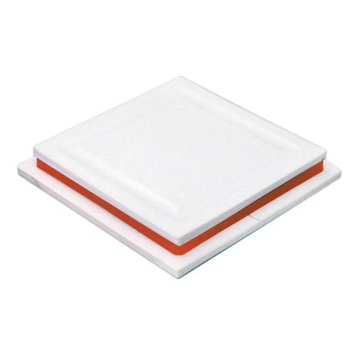 Tudo sobre 'Placa Anti Formiga Branca 12 Cm - 12841'