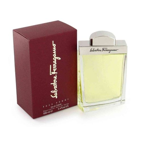 Salvatore Ferragamo Perfume Masculino 100 Ml