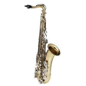 Sax Tenor Michael Wtsm49