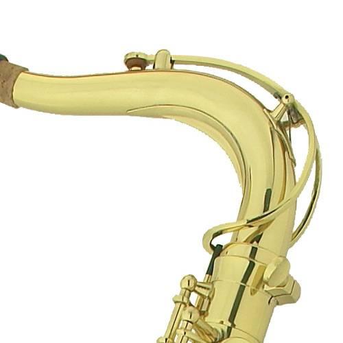 Sax Tenor Sib WTSM35 - Michael