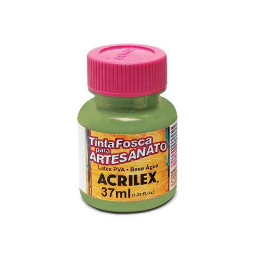 Tinta Fosca para Artesanato 37 Ml Acrilex - Verde Musgo