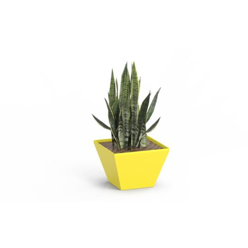 Vaso e Cachepô Neo Color Amarelo