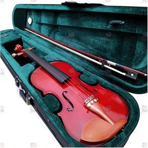 Violino 4/4 Michael VNM146 Boxwood Series + Case e Arco Outlet