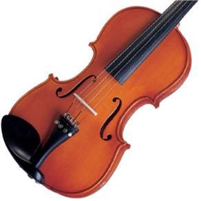 Violino 4/4 Tradicional com Arco de Crina Animal Michael
