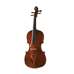 Violino 3/4 Maple Flame Series VNM-36 - Michael