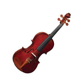 Violino Estojo Extra Luxo
