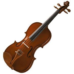 Violino Maple Flame 3/4 Vnm36 Dark Antique Finishing - Michael
