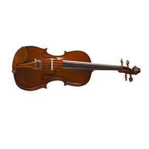 Violino Michael VNM46 4/4 Arco de Crina Animal Boxwood Series