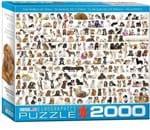 Ficha técnica e caractérísticas do produto (1103) The World Of Dogs - 2000 Peças