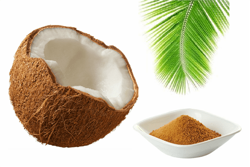 Ficha técnica e caractérísticas do produto Açúcar de Côco 20kg - Space Green