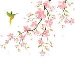 Adesivo de Parede Beija Flor Direita