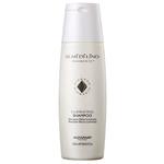 Ficha técnica e caractérísticas do produto Alfaparf Semi Di Lino Diamante Illuminating - Shampoo 250ml