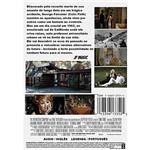 DVD Direito de Amar