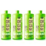 Ficha técnica e caractérísticas do produto Escova Progressiva Definitiva de Quiabo Organic 4X1 Litro