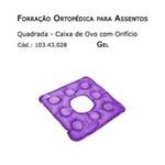 Ficha técnica e caractérísticas do produto Forrações de Assento - Caixa de Ovo Quadrada com Orifício (Gel) - Bioflorence - Cód: 103.0028