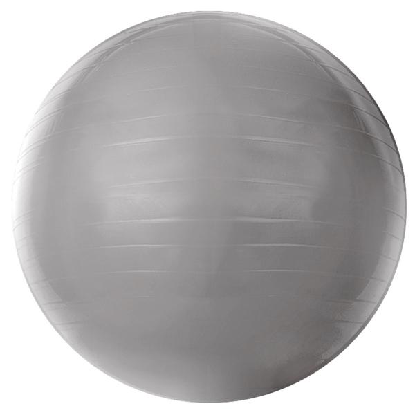 Ficha técnica e caractérísticas do produto Gym Ball 55Cm T9-55 Acte Sports