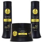Ficha técnica e caractérísticas do produto Kit Cavalo Forte Shampoo Condicionador 300ml e Máscara 250g - Haskell