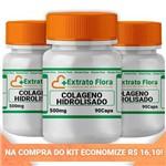 Ficha técnica e caractérísticas do produto Kit Colágeno Hidrolisado 500mg 90 Cápsulas (3und)