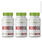 Ficha técnica e caractérísticas do produto Morosil 500mg 30 Cápsulas (3 UND) - Miligrama
