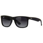 Ficha técnica e caractérísticas do produto Ray Ban 4165 622T3 - Oculos de Sol