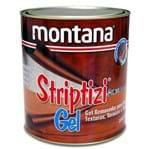 Ficha técnica e caractérísticas do produto Removedor de Tinta Gel Striptizi 900ml 1kg