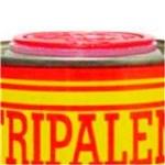 Ficha técnica e caractérísticas do produto Removedor Pastoso de Tintas 500g-STRIPALENE-701394